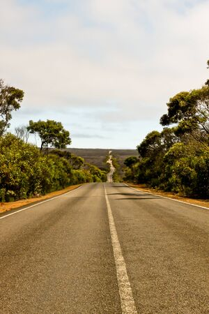Highway through Australian Bush