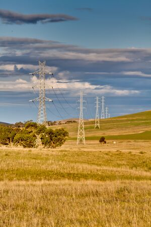 Powerlines Through Australian Bush Land photo