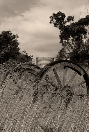 Wagon Wheels left to decay in a over grown field.
