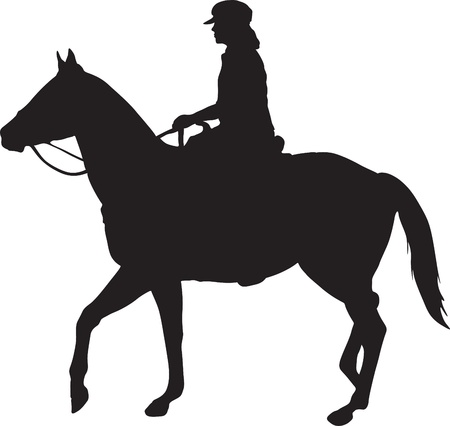 Horse and Rider Illustration