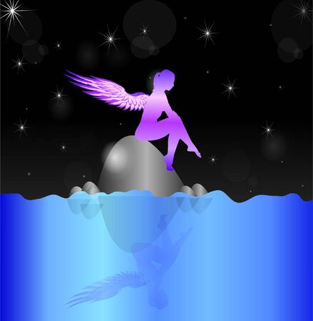 water wings: Fairy Sitting on Rock Under Night Sky