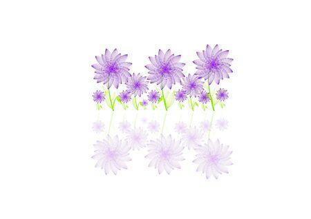 Daisy Garden Illustration