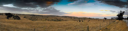 Dry Grazing Land Stock Photo