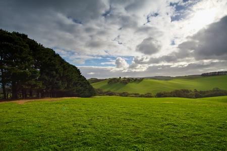 Green Hills   Fields