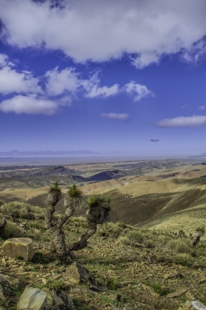 Flinders Ranges South Australia View from Mount Arden