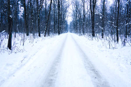 winter landscape with snow covered road and trees in freezing weather