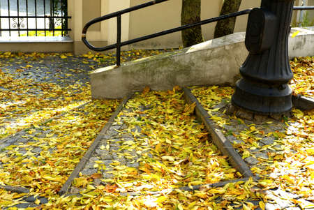 fallen yellow autumn leaves on concrete stairs and a lamp post - colorful urban street background