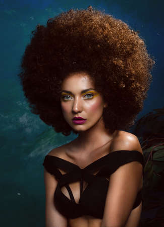 Girl in studio with an African hairstyle Stock Photo