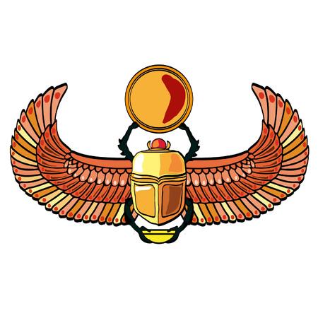 Scarabaeus Иллюстрация