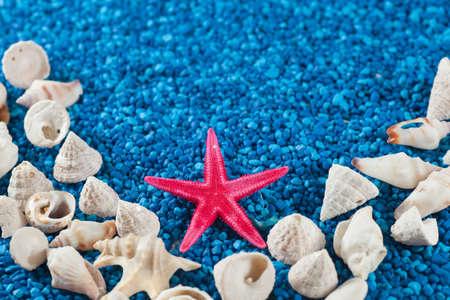 simetric: Star-fish and seashells on sand, centered, simetric