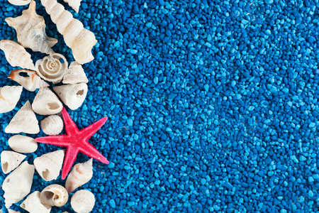Star-fish and seashells on blue sand photo