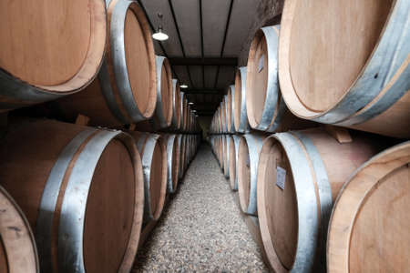 barell: Wine barrels stacked in old winery cellar Editorial