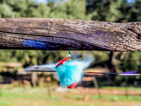 when: Balloon filled with colored water exploding when hit by an arrow. Closeup hi-speed shot