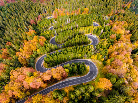 Winding Road in the Mountains in the middle of the Autumn