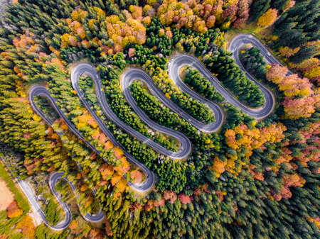 Winding Highway trough the forest in Autumn