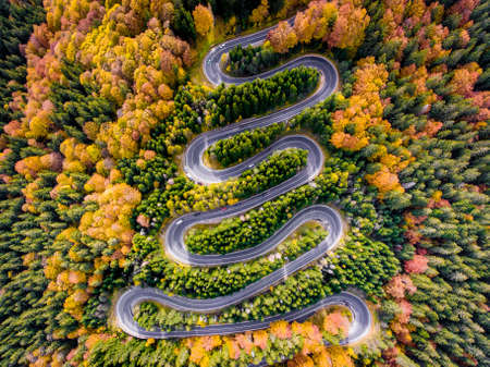 Autumn Winding Road in the Forest Stock Photo