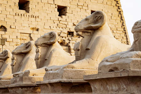 Karnak Temple sphinxes alley. Ram headed sculptures in front of Karnak Temple in Luxor Stock Photo