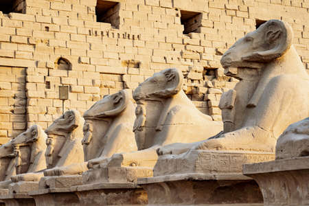 The Ram statues in front of Karnak Temple, Luxor, Egypt Stok Fotoğraf