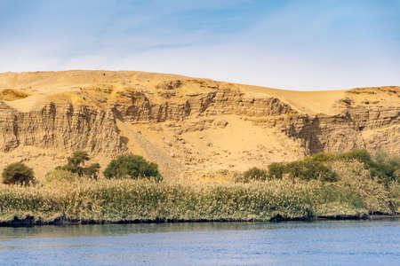 Vegetation on the banks of Nile River in Egypt