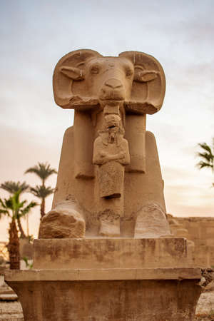 One of the ram headed statues in front of Karnak Temple Complex or Karnak in Egypt, Africa