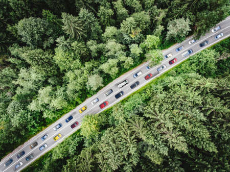 Rush hour traffic in the middle of the forest. Ecological concept. Aerial top view of cars in a traffic jam Stok Fotoğraf
