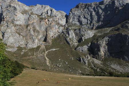 picos: Picos de Europa Spain