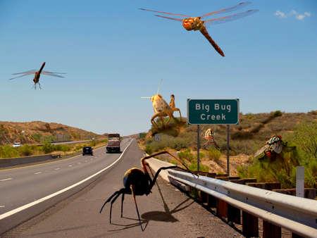 bach: Eine surreale Foto-Manipulation portr�tiert von riesigen Insekten und Spinnen auf ein Arizona-Highway in der N�he von einer tats�chlichen Ort genannt Big Bug Creek. Die urspr�nglichen Fotos verwendet sind von meiner Kamera.  Illustration
