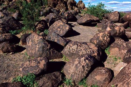 rocky point: Una vista del primo piano dei petroglifi rocce laviche coperte di riferimento Arizona chiamato Rocky Point Questi petroglifi sono centinaia, se non migliaia, di anni non si sa molto sulle persone che le hanno fatte, tranne che hanno vissuto qui per un periodo di ti