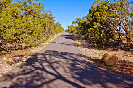 south rim: The paved walkway along the south rim of the Grand Canyon known as the Hermits Trail.  Stock Photo