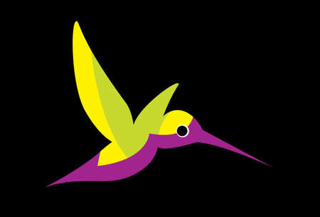 Colibri, hummingbirds. Illustration of a flying colorful Colibri. Bird of hummingbirds. Vector drawing for logo or Illustration. Illustration