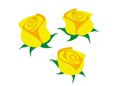 Bouquet of yellow roses. Stylized drawing of yellow flowers on a white background. Vector image for illustrations.