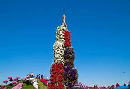 miracle: Miracle garden, Dubai