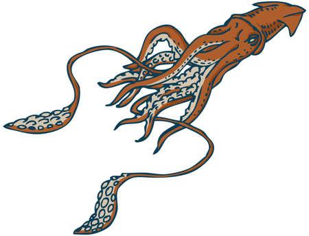 Giant Underwater Squid Isolated on White Background Illustration