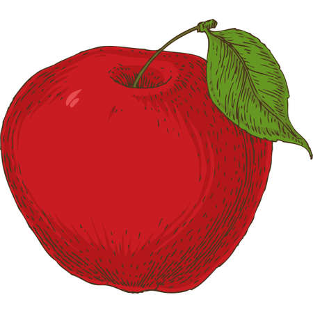 Ripe Red Apple with Green Leaf on White Background