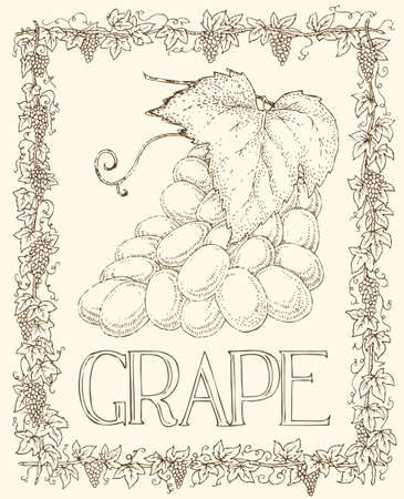 Card with Grape and Leaves