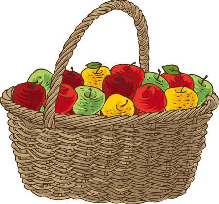 canastas con frutas: Cesta de mimbre con las manzanas maduras. Aislado en un fondo blanco