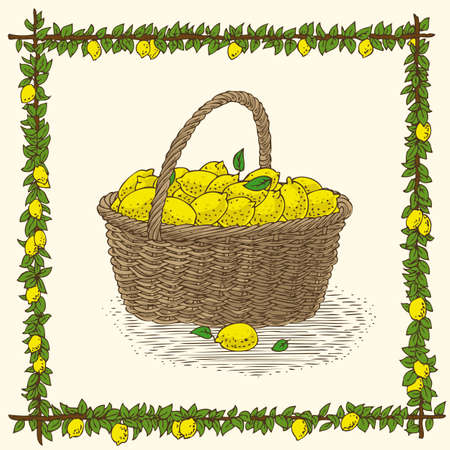bast basket: Wicker Basket with Ripe Yellow Lemons in Floral Frame on a Beige Background