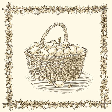 bast basket: Wicker Basket with Ripe Lemons in Floral Frame on a Beige Background