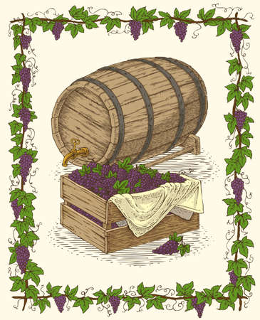hogshead: Oak Barrel and Wooden Box with Ripe Grape in Vine Frame Illustration