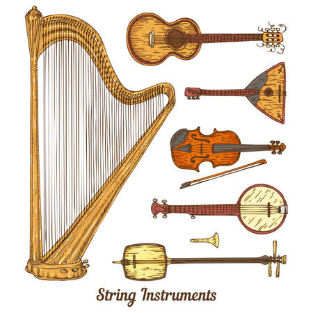 minstrel: Collection of String Musical Instruments. Isolated on a White