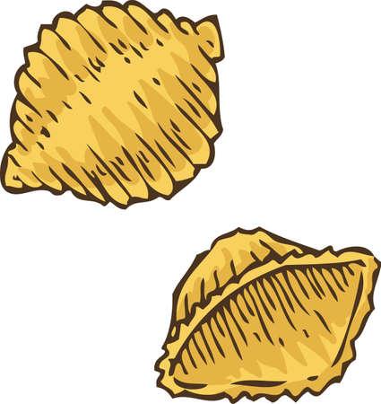 staple: Italian Pasta. Conchiglie