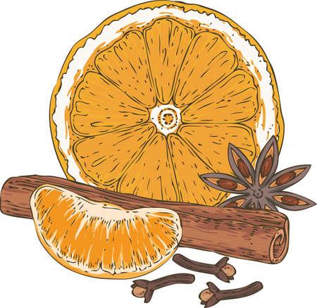 Orange slice. Illustration