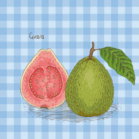 Card with Ripe Guava with Green Leaf on a Blue Plaid Background Illustration