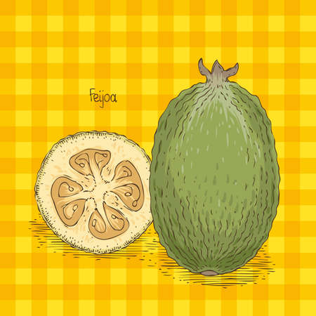 Card with Ripe Feijoa Isolated on an Orange Plaid Background