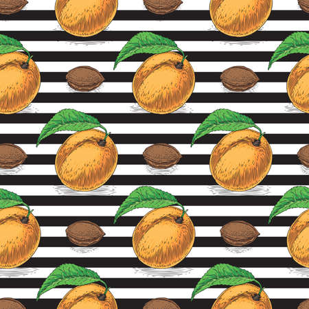 Seamless Vector Pattern with Ripe Apricot and Kernels on a Striped Black and White Background