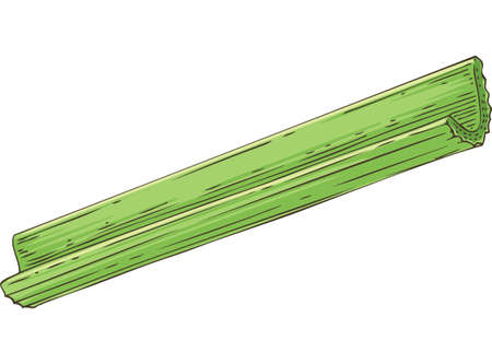 Fresh Green Celery Stick