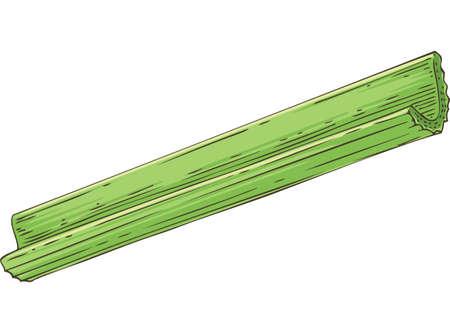 Fresh Green Celery Stick