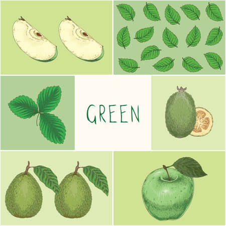 Education Game of Green Color Fruits and Leaves on Square Card Hand Drawn Illustration