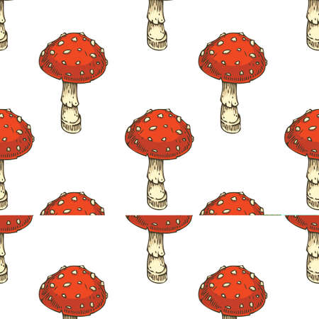 SEamless Pattern. Red Amanita Fly Agaric Mushroom