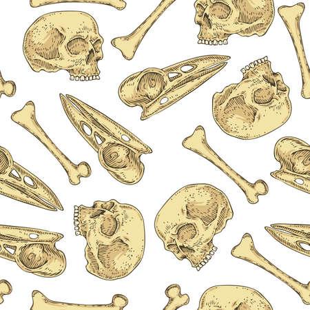 Seamless Pattern with Skulls and Bones Illustration